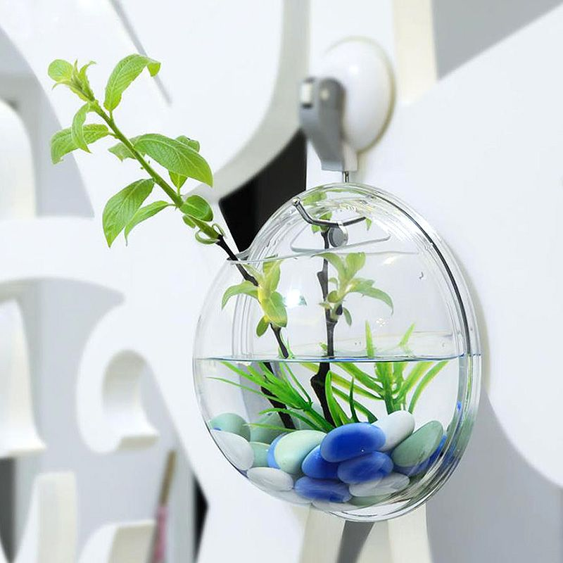 Decoration Aquarium Nettoyage